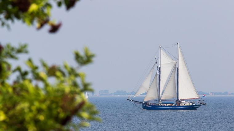 Segelschiff, Oban, Logger, Schoner, Ostsee, Aeroe, Dänemark, Flieder