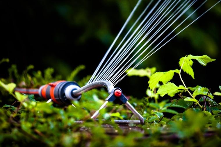 Rasensprenger, Wasser, Garten