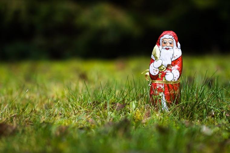 Gras, Rasen, Garten, Weihnachten, Heiligabend, Weichnachtsmann